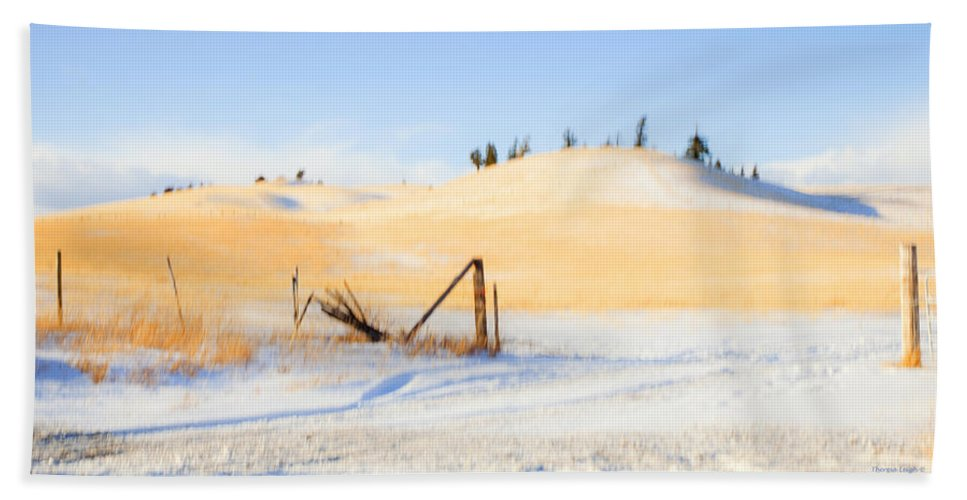Snow Beach Towel featuring the photograph The Trees On The Hill by Theresa Tahara
