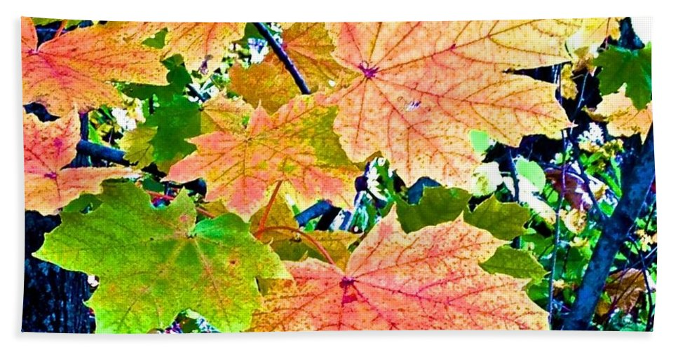 Leaves Beach Towel featuring the photograph The Turning Leaves by Christy Gendalia