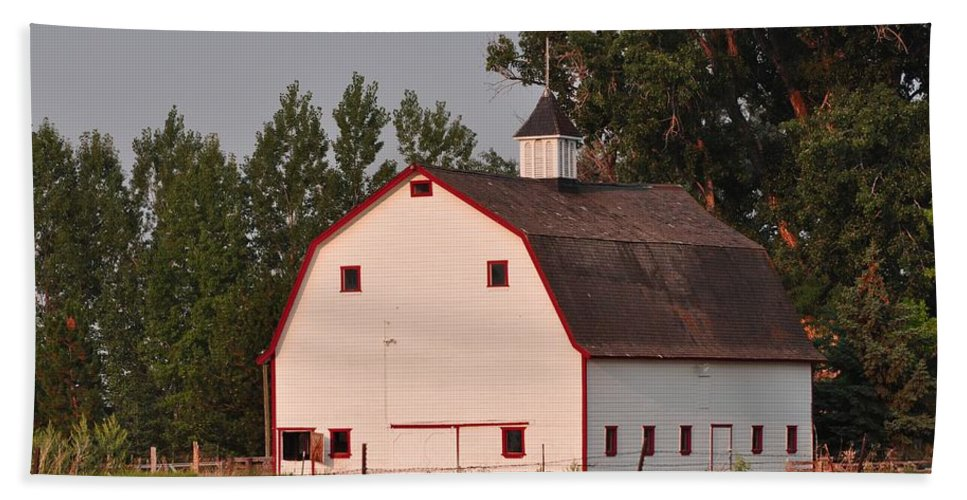 Barn Beach Towel featuring the photograph The White Barn by Image Takers Photography LLC - Laura Morgan