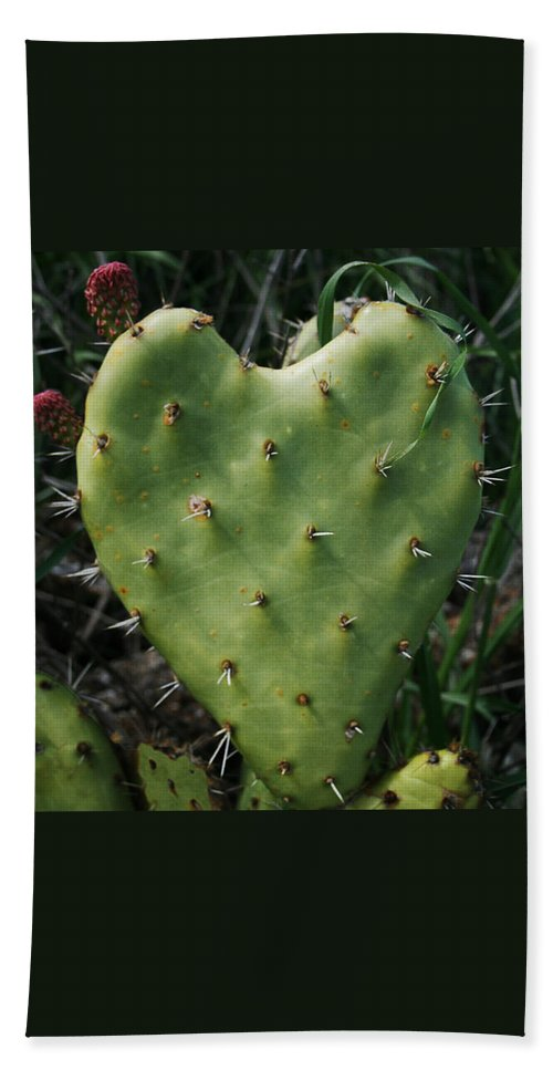 Thorny Heart Beach Towel featuring the photograph Thorny Heart by Ellen Henneke