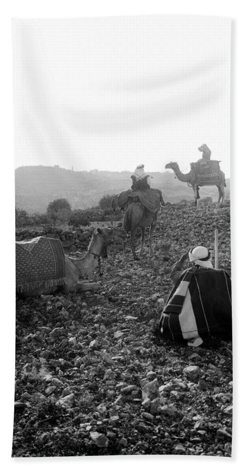 Bethlehem Beach Towel featuring the photograph Three Camels by Munir Alawi