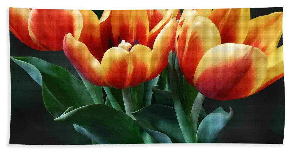 Tulip Beach Towel featuring the photograph Three Orange And Red Tulips by Susan Savad