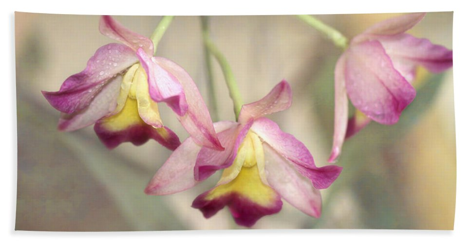 Art Beach Towel featuring the photograph Three Orchid Beauties by Sabrina L Ryan