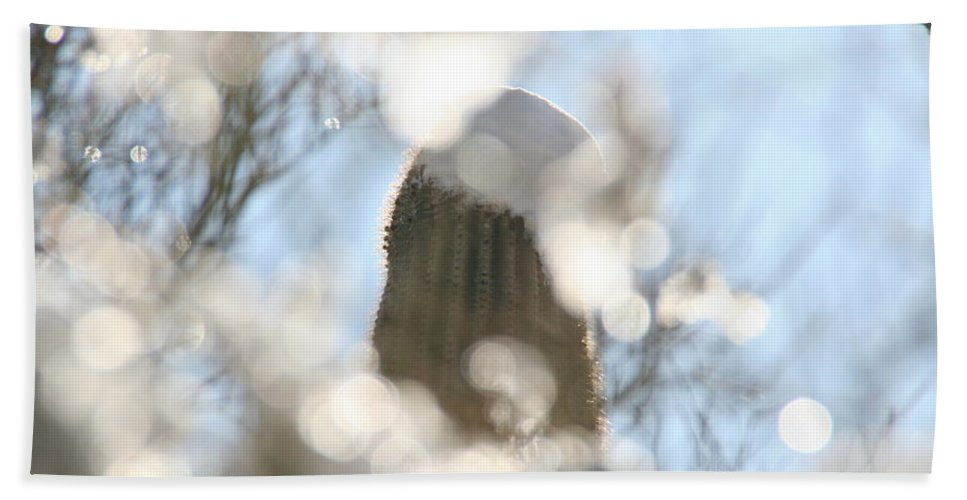 Southwest Beach Towel featuring the photograph Through The Ice by David S Reynolds