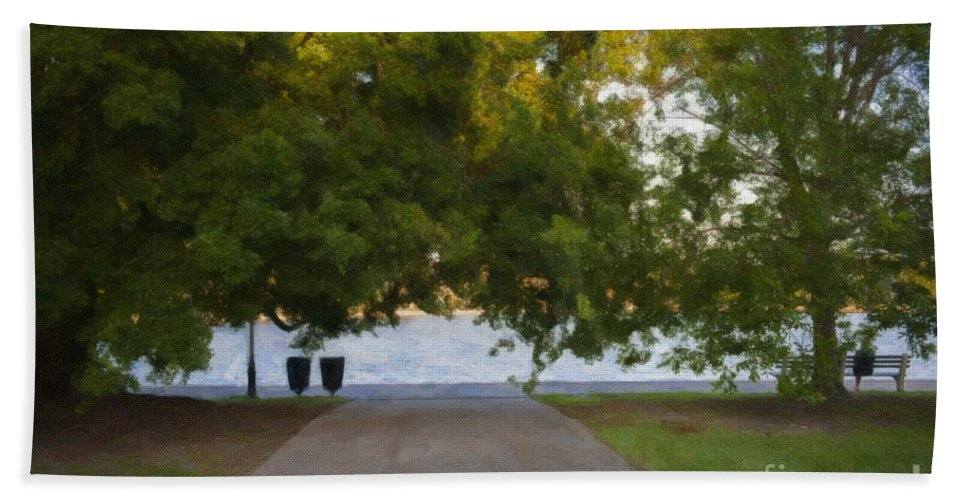 Colonial Park Beach Towel featuring the photograph Through The Tree's by Dale Powell