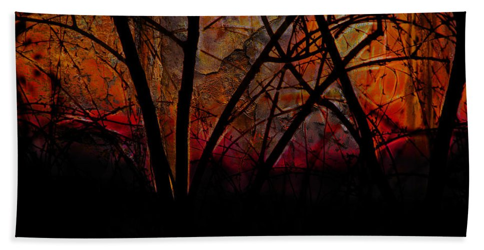 Erica Beach Towel featuring the photograph Through The Trees by Ericamaxine Price
