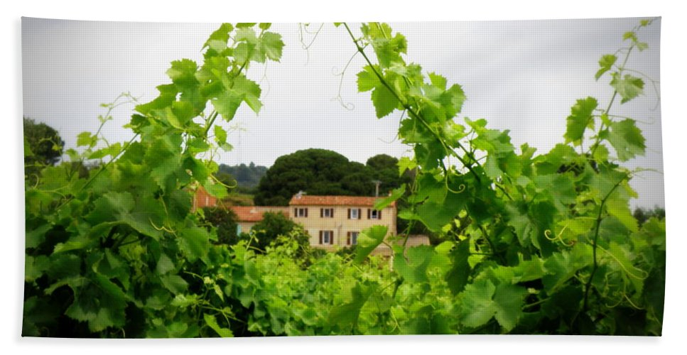 Vineyard Beach Towel featuring the photograph Through The Vines by Lainie Wrightson