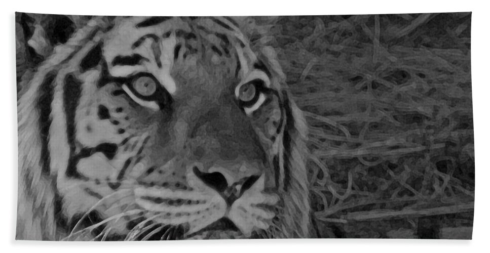 Tiger Beach Towel featuring the photograph Tiger Bw by Ernie Echols