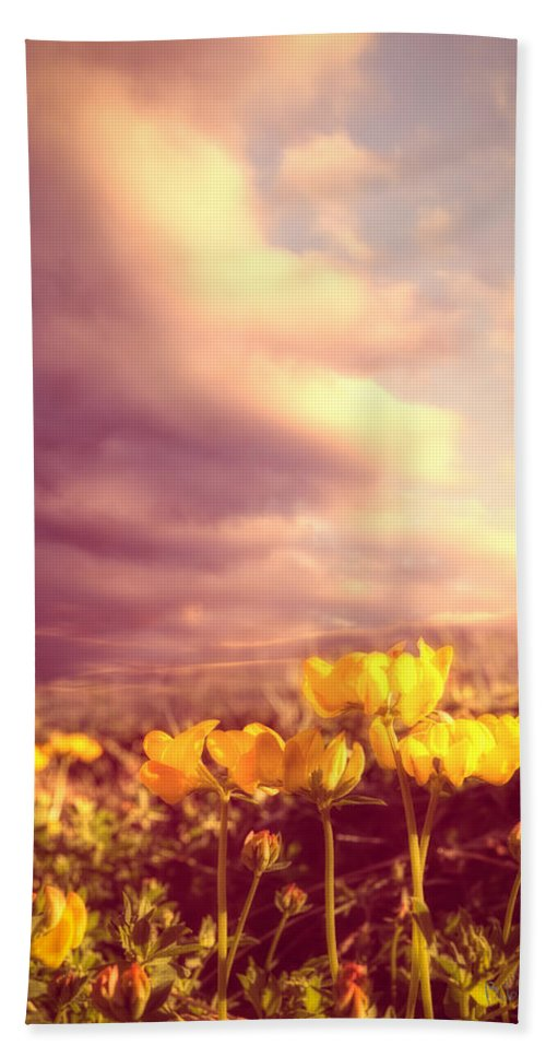Bird's Foot Trefoil Beach Towel featuring the photograph Tiny Flowers by Bob Orsillo