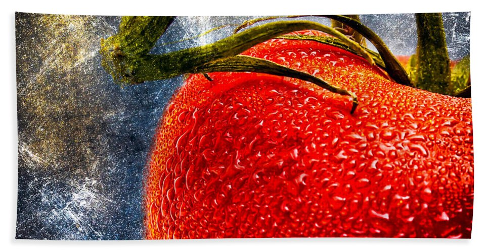 Tomato Beach Towel featuring the photograph Tomato On A Vine by Bob Orsillo