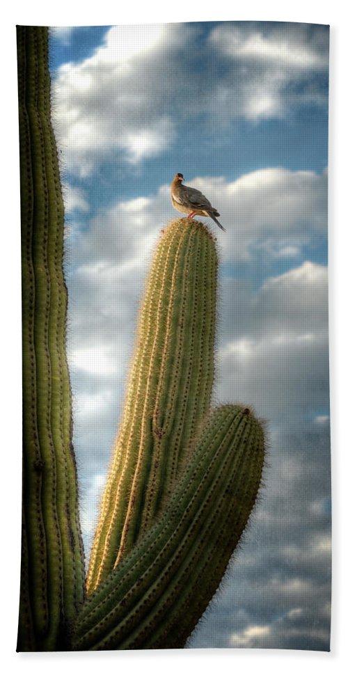 Arizona Beach Towel featuring the photograph Touch The Sky by Saija Lehtonen