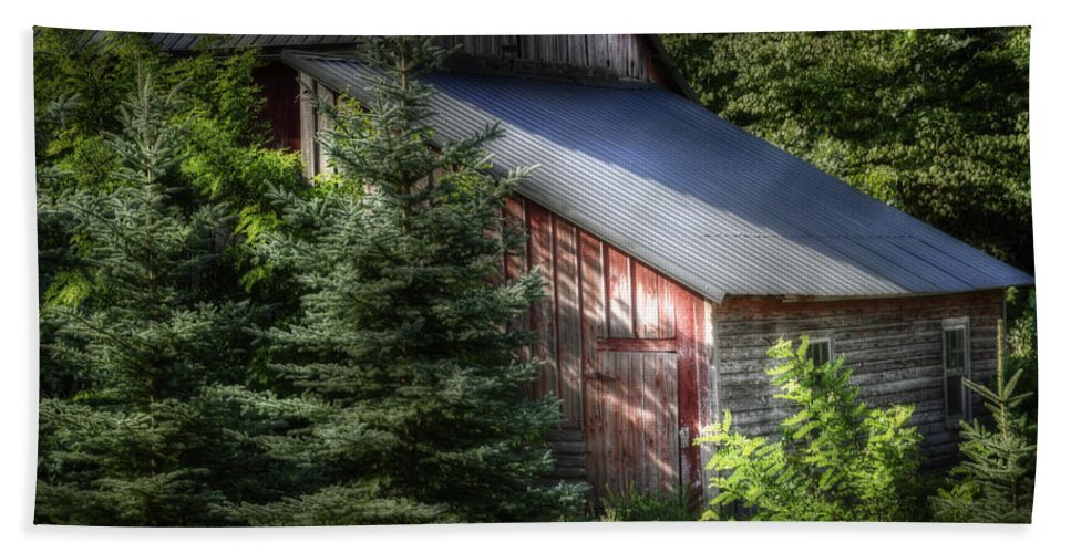 Agricultural Beach Towel featuring the photograph Touched By The Sun by Joan Carroll