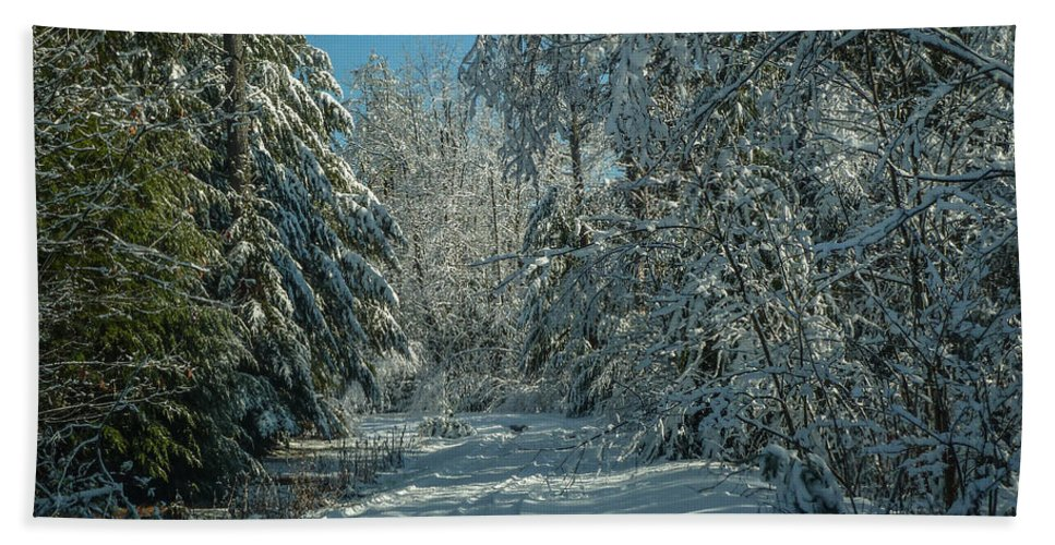 Maine Beach Towel featuring the photograph Tracks In The Snow by Jane Luxton