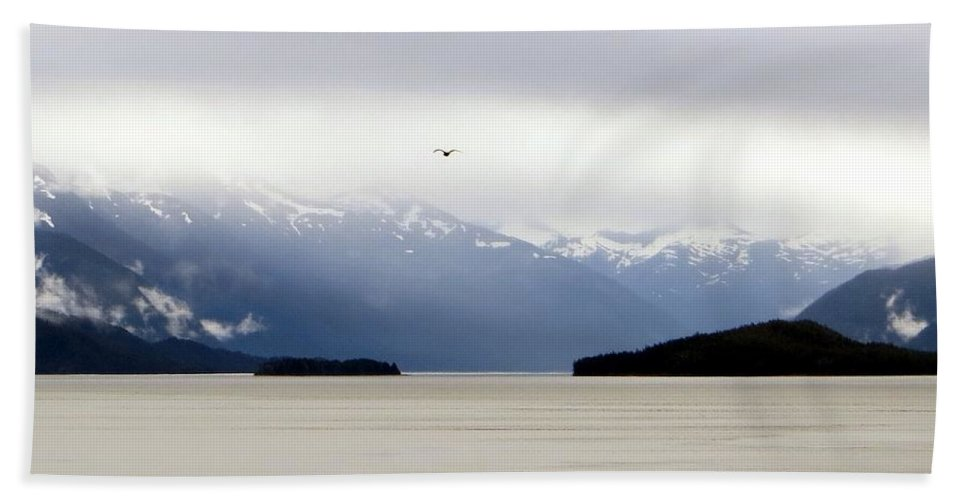 Tracy's Beach Towel featuring the photograph Tracy's Arm Fjord by Jennifer Wheatley Wolf