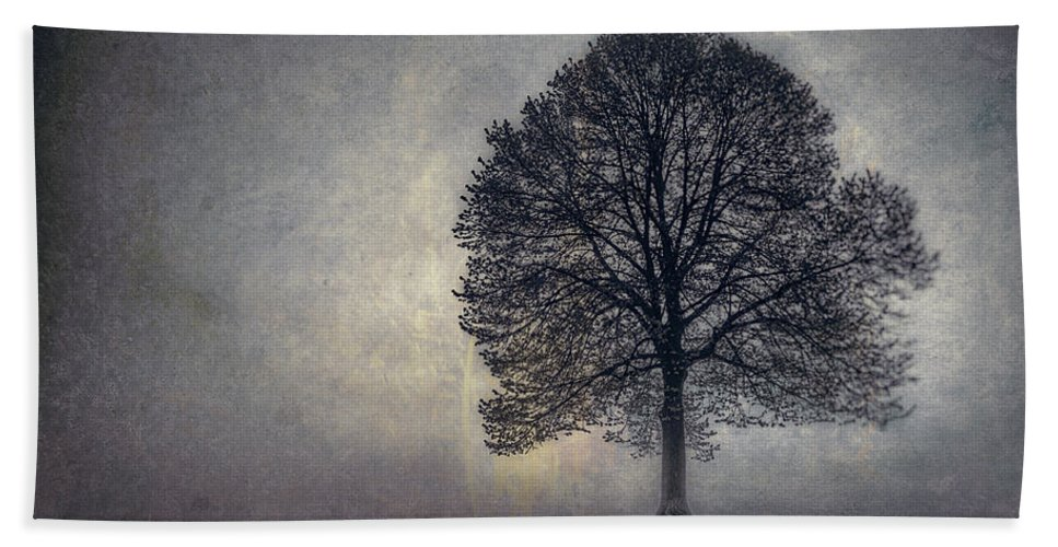 Tree Beach Towel featuring the photograph Tree Of Life by Scott Norris