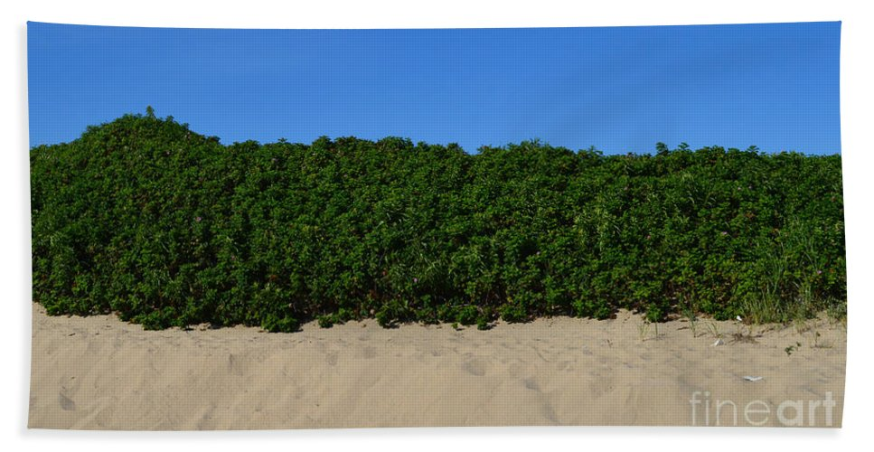 Sand Beach Towel featuring the photograph Tri-color At The Beach by Meandering Photography