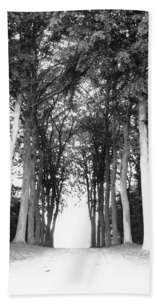 Trees Beach Towel featuring the photograph Tunnel Of Trees by Christine Jepsen