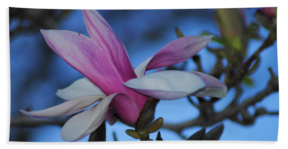 Flower Beach Towel featuring the photograph Unpealed by Frozen in Time Fine Art Photography