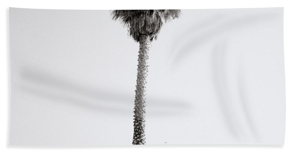 Graffiti Beach Towel featuring the photograph Venice Beach by Shaun Higson