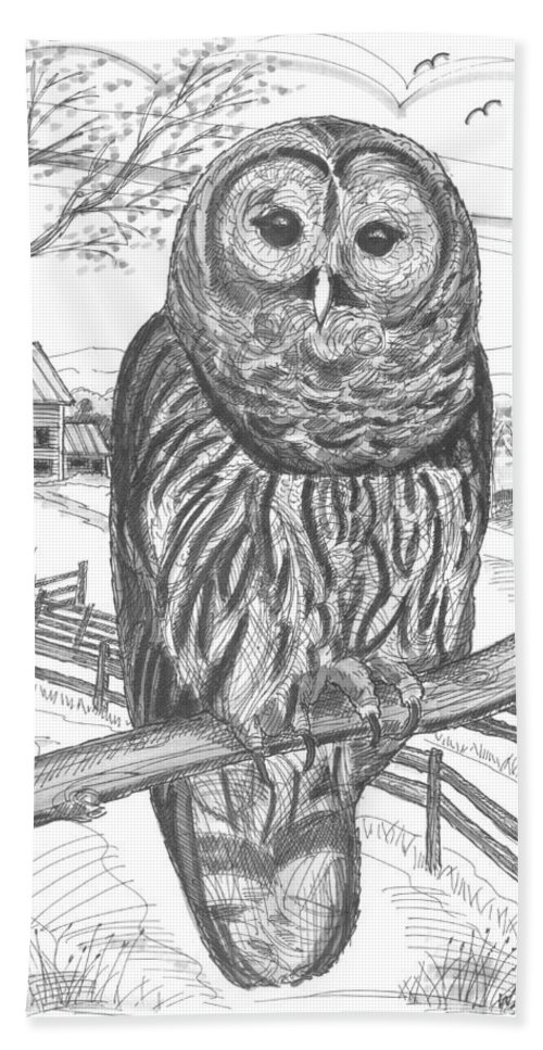Barred Owl Beach Towel featuring the drawing Vermont Barred Owl by Richard Wambach