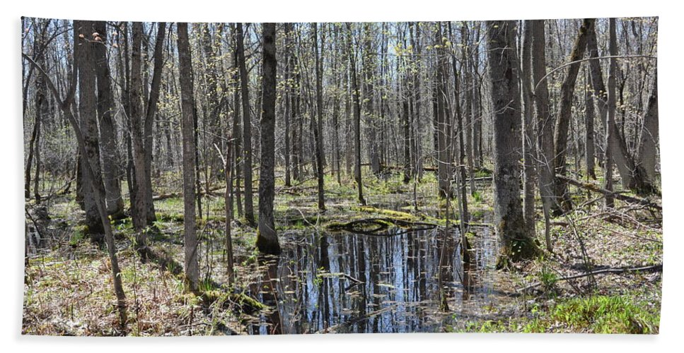 Pool Beach Towel featuring the photograph Vernal Pool 2 by Valerie Kirkwood