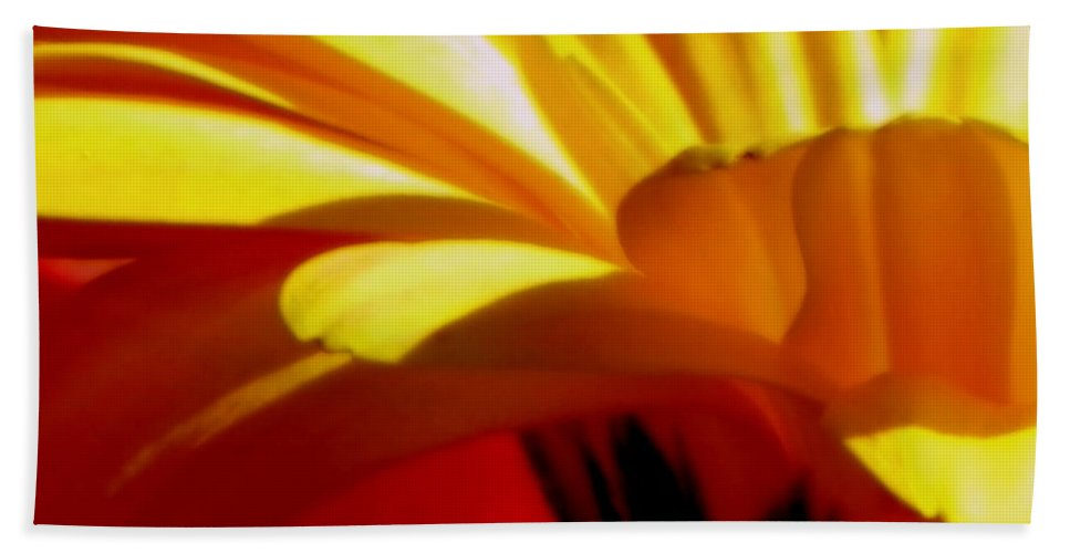 Flower Beach Towel featuring the photograph Vibrance by Karen Wiles