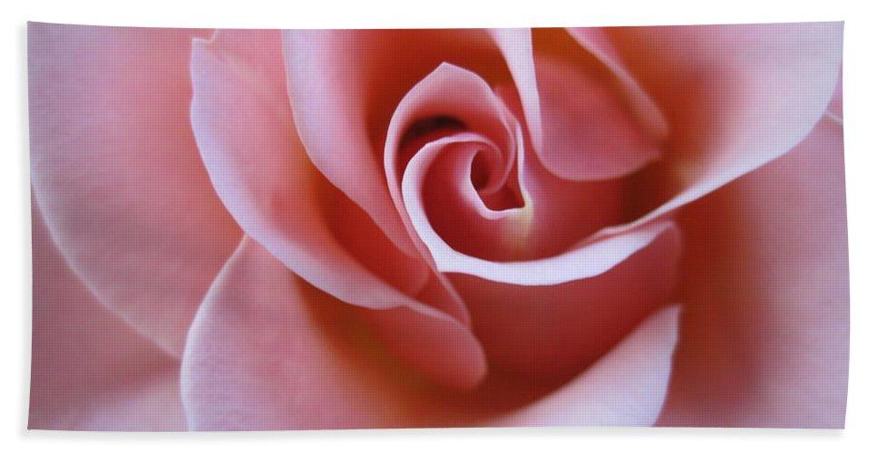Floral Beach Towel featuring the photograph Vivacious Pink Rose 4 by Tara Shalton