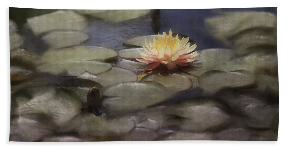 Flowers Beach Towel featuring the photograph Water Lily by Fran Gallogly
