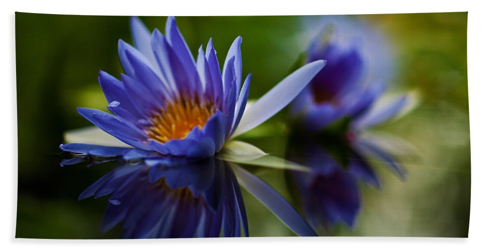 Lily Beach Towel featuring the photograph Water Lily Reflections by Mike Reid