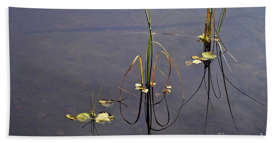 Tranquil Waters Beach Towel featuring the photograph Water Scene by Heiko Koehrer-Wagner