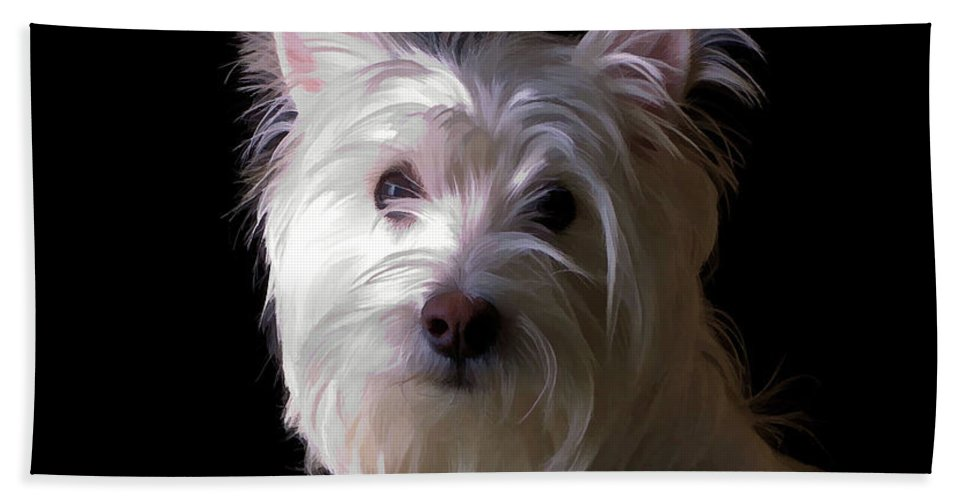 Westie Beach Towel featuring the photograph Westie Drama by Edward Fielding