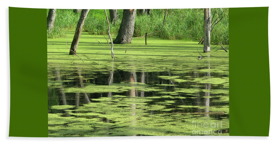 Landscape Beach Towel featuring the photograph Wetland Reflection by Ann Horn