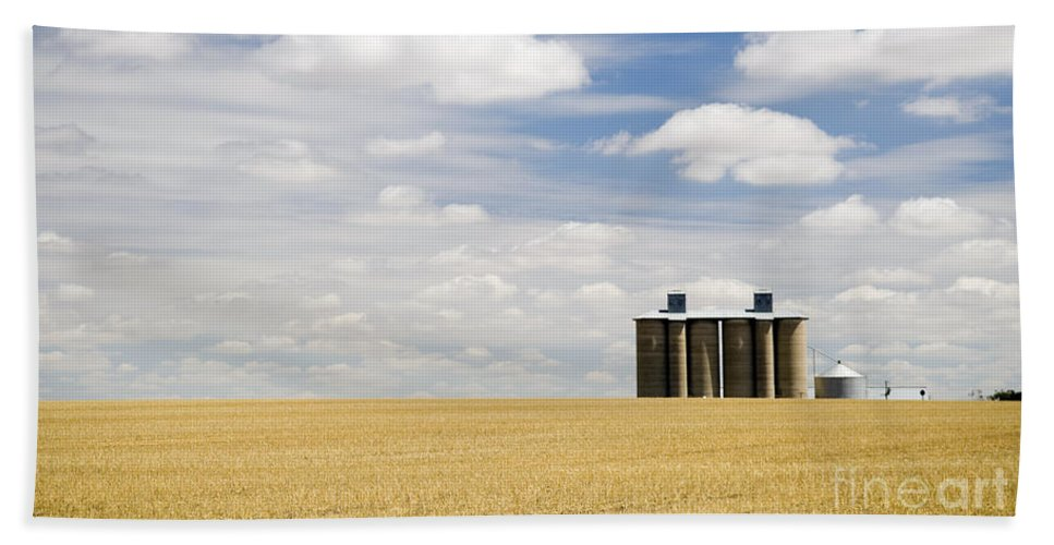 Agriculture Beach Towel featuring the photograph Wheat Fields by Tim Hester