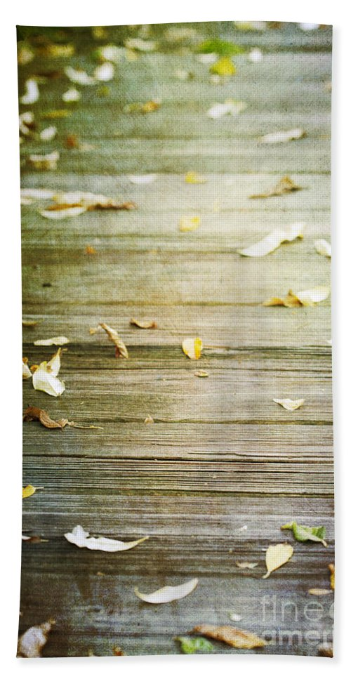 Leaves Beach Towel featuring the photograph When He Leaves by A New Focus Photography