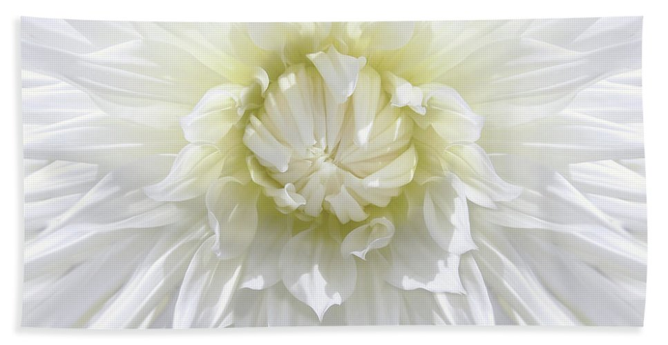 Dahlia Beach Towel featuring the photograph White Dahlia Floral Delight by Jennie Marie Schell