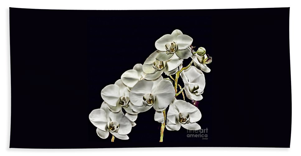 White Orchids Beach Towel featuring the photograph White Orchids by Tom Prendergast