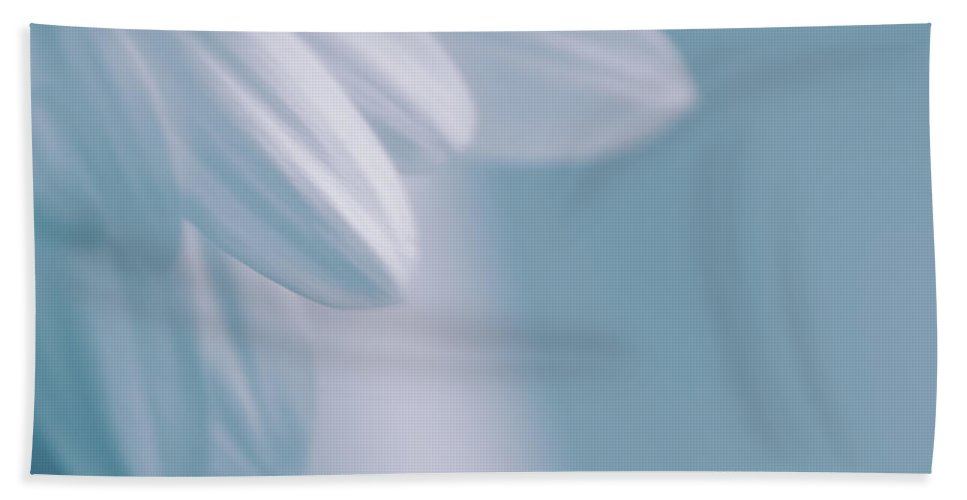 Daisy Beach Towel featuring the photograph Whiteness 02 by Aimelle