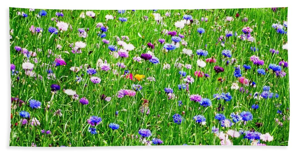 Photograph Beach Towel featuring the photograph Wild Flowers by Cristina Stefan
