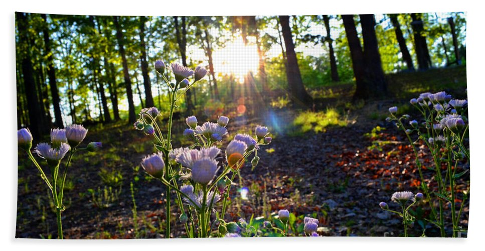 Nature Beach Towel featuring the photograph Wildflower Sunset by Debbie Portwood