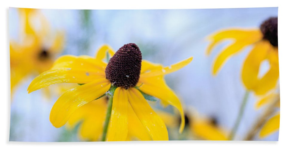 Flower Beach Towel featuring the photograph Wildflowers by Edward Fielding