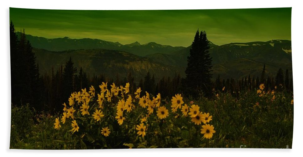 Beartooth Mountains Beach Towel featuring the photograph Wildflowers In The Beartooth Mountains by Jeff Swan