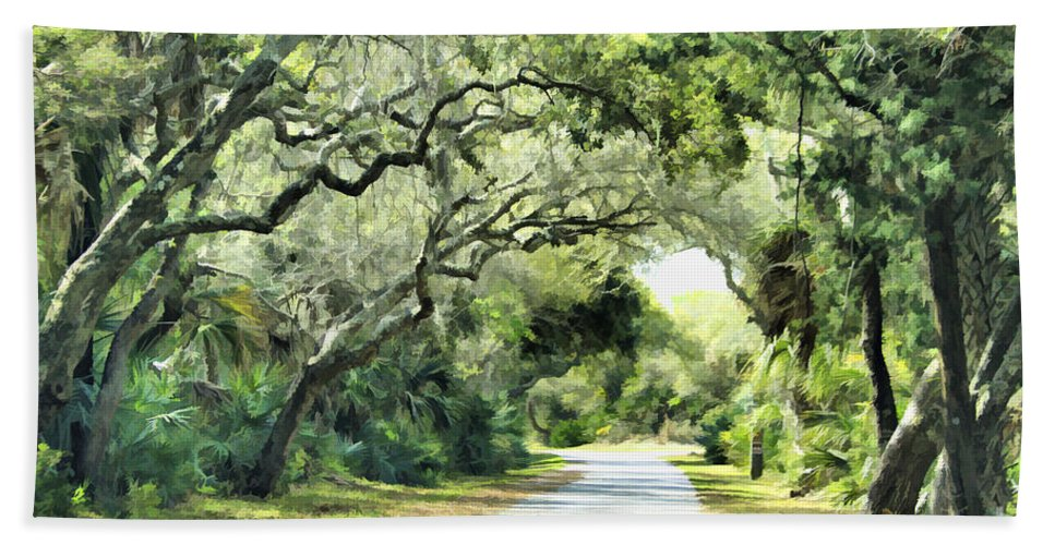 Road Beach Towel featuring the photograph Winding Path by Deborah Benoit