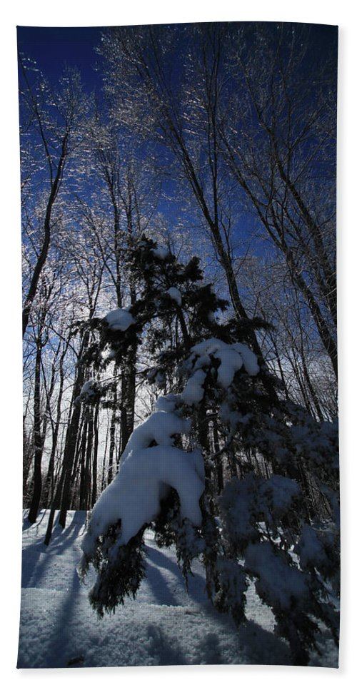 Winter Beach Towel featuring the photograph Winter Blue by Karol Livote