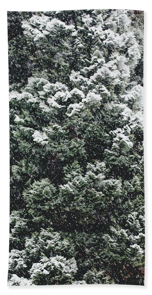 Foliage Beach Towel featuring the photograph Winter Bush by Pati Photography