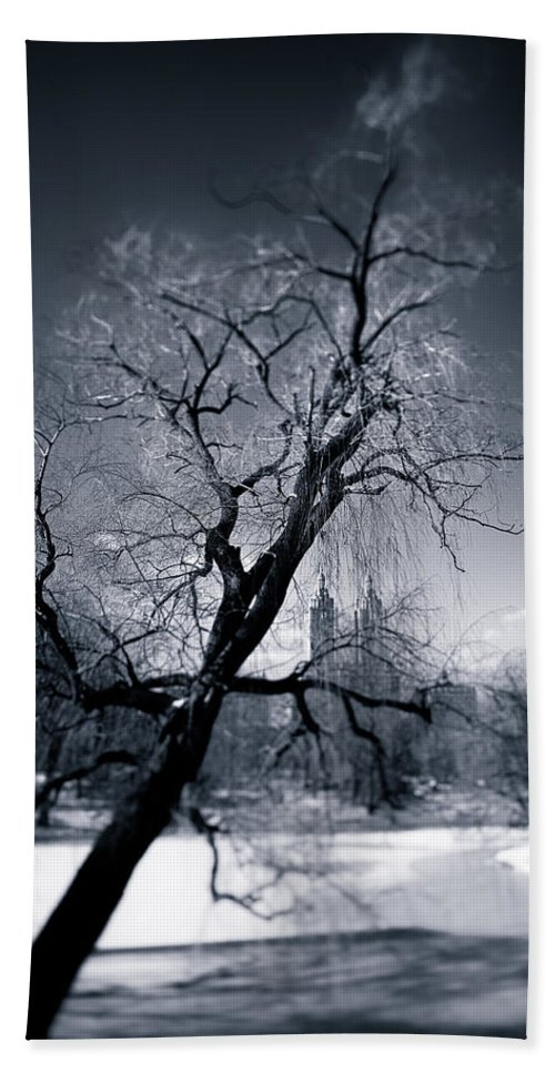 New York Beach Towel featuring the photograph Winter In Central Park by Dave Bowman