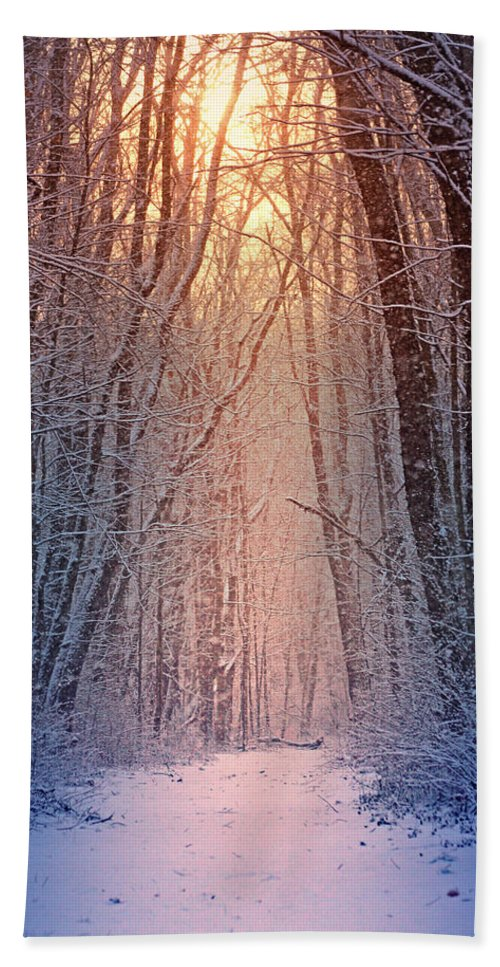 #winter Beach Towel featuring the photograph Winter Pathway by Rob Blair