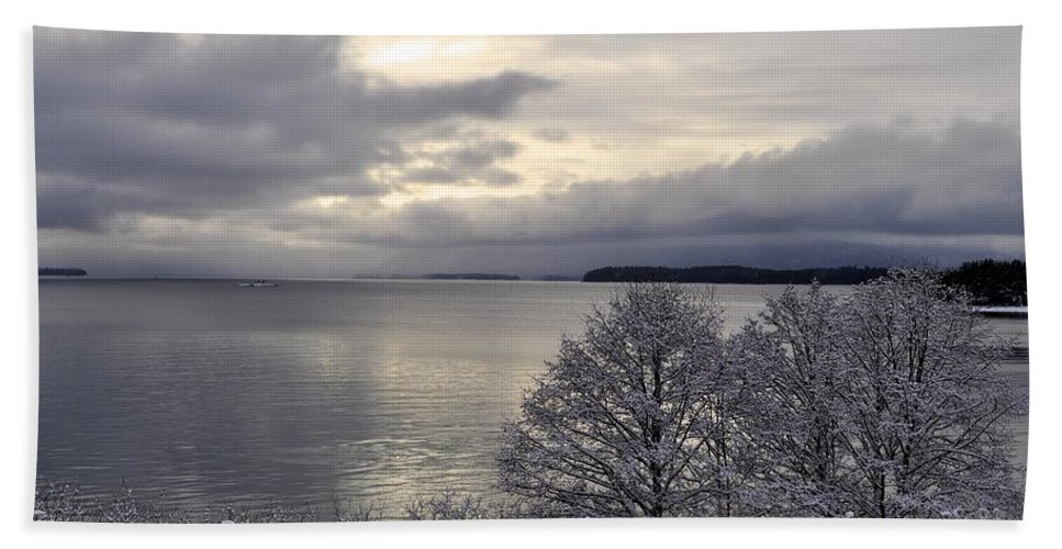 Landscape Beach Towel featuring the photograph Winter Trees by Cathy Mahnke