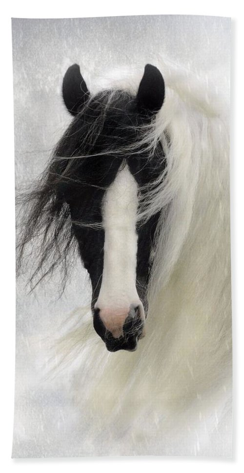 Horses Beach Towel featuring the photograph Wisteria by Fran J Scott