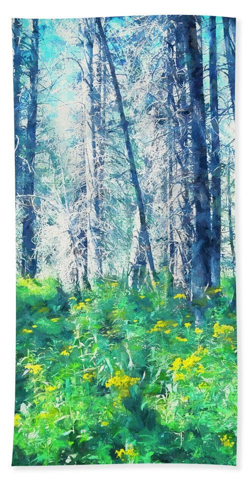 Landscape Beach Towel featuring the photograph Woods 1 by Pamela Cooper