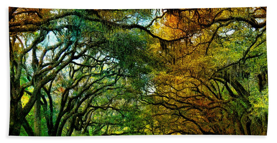 Wormsoe Plantation Beach Towel featuring the photograph Wormsloe Plantation by Ericamaxine Price